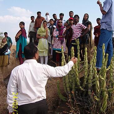 rain-water-harvesting-at-hiware-bazar